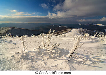 Beautiful winter landscape in the mountains, Bieszczady, Poland