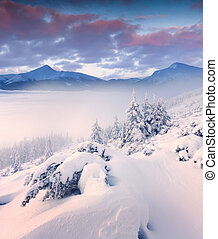 Beautiful winter landscape in the mountains. Foggy sunrise.