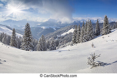 Beautiful winter landscape in the mountains