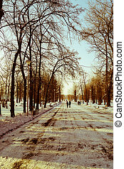 beautiful winter landscape in the Park in the city