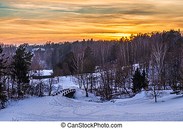 Beautiful Winter Landscape in the Sunset Background