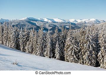 beautiful winter landscape - Majestic landscape glowing by...