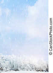 Snow falling softly against a blurred background of winter landscape of snow covered trees with large expanse of sky.
