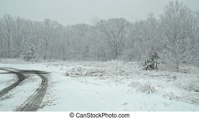 Beautiful winter landscape Snow storm with trees