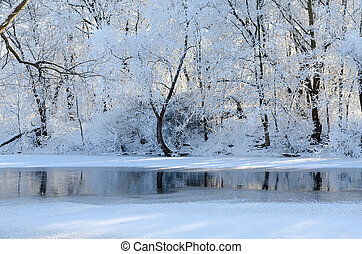Trees in hoarfrost on river bank in January