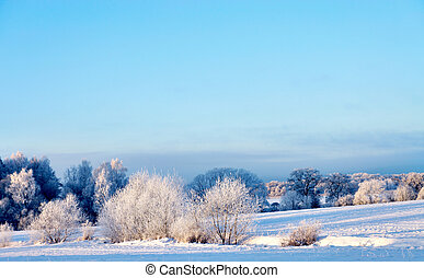 winter landscape - Beautiful winter landscape with rime...