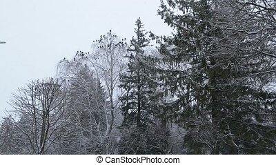 Beautiful winter landscape with snow covered trees - winter...