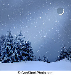 Beautiful winter landscape with snow covered trees at night