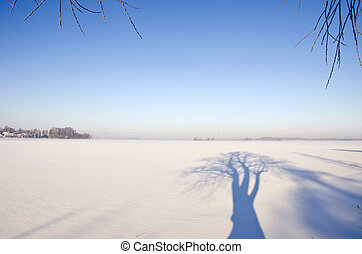 winter landscape with tree shadow