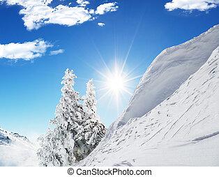 Beautiful winter landscape with trees - Beautiful winter...