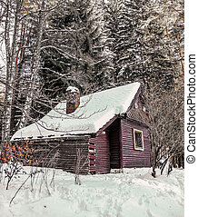 Beautiful winter landscape with wooden house in winter covere