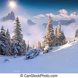 Beautiful winter morning in the mountains