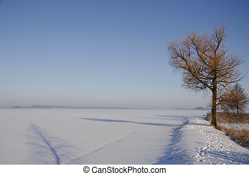 winter morning landscape with mist and tree shadow