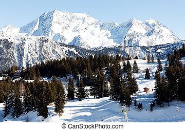 Beautiful winter mountain scenery with pine trees