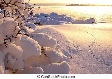 Beautiful winter sea landscape at sunset with fog