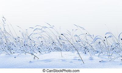 Beautiful winter snow field