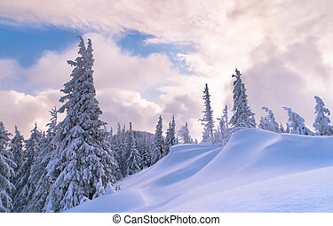 Beautiful winter sunset in the Carpathian mountains
