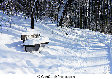 Beautiful winter with a lot of snow in the forest