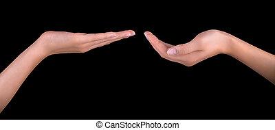 Beautiful woman hand holding
