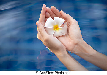 Beautiful woman hands holding flower. Water Background.