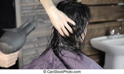 Beautiful woman in beauty salon. Professional hair dresser...
