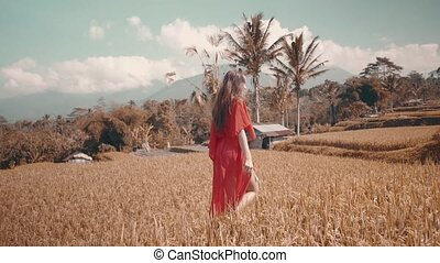Beautiful woman in rice fields