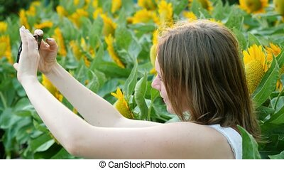 Beautiful woman in the field with sunflowers takes a selfie phone. 3840x2160, 4k