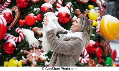 beautiful woman with dog Papillon near the Christmas tree on the street.