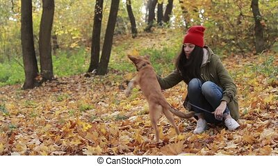 Beautiful woman with dog playing in autumn park