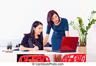 beautiful women discuss business at work