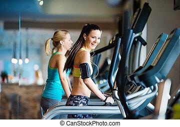 Beautiful women in gym - Two young beautiful women working...