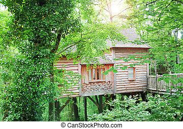 beautiful wood house on top the tree