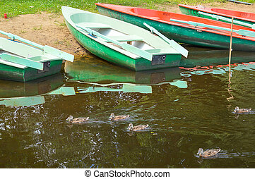 Beautiful wooden multicolored boats with oars on the beach for walks along the river, lake, sea, ocean in a nature park on the shore