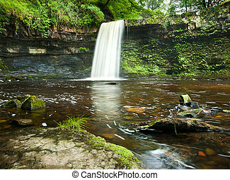 Beautiful woodland stream and waterfall in Summer