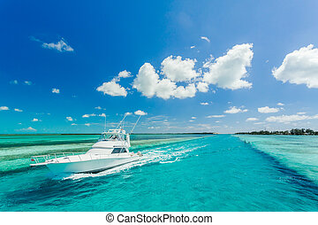 Beautiful yacht in a sea - Beautiful yacht sailing in the...