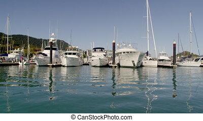 Beautiful yachts docked in a pier - A beauty shot of...
