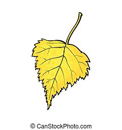 Beautiful yellow colored autumn birch leave isolated on white background