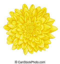 beautiful yellow dahlia with the effect of a watercolor...