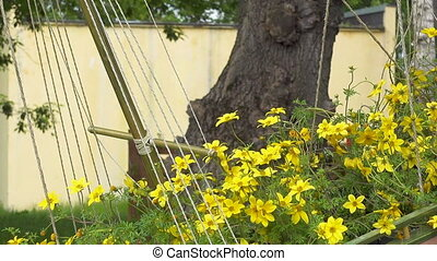 Beautiful yellow flowers swaying in the wind
