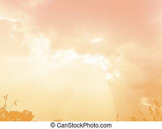 Beautiful Yellow Sky with sun rays