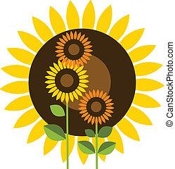 beautiful yellow Sunflower - beautiful yellow sunflower on...