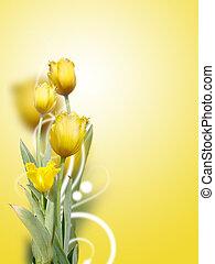 beautiful yellow tulips background