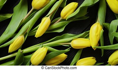 Beautiful yellow tulips on black rustic wooden background....