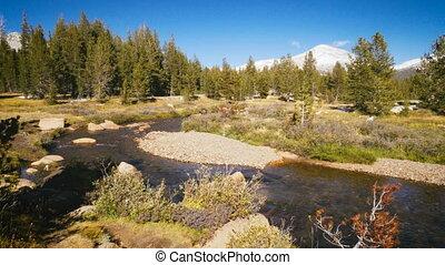 beautiful yosemite national park in california