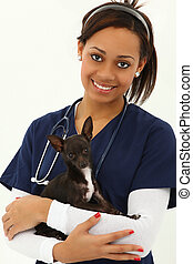 Beautiful Young Adult Veterinarian with Chihuahua over white...