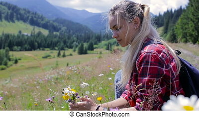 Beautiful young girl collects wild flowers in the mountains