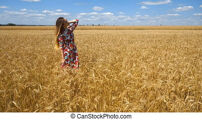 beautiful young girl standing in a field with wheat in a beautiful dress