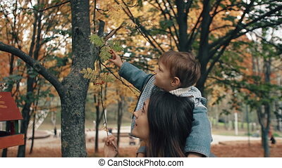 beautiful young mother holds on the shoulders a cute little son, boy plucks red berries from a tree in autumn park 4k