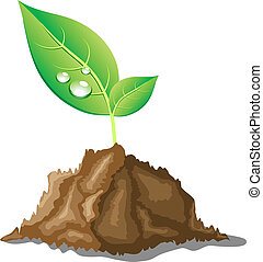 Beautiful young sprout. - .Young sprout in ground. Vector ...