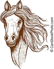 Beautiful young welsh cob horse sketch - Sketch portrait of...